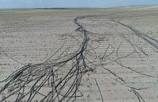 Eskişehir'de 120 bin dönüm arazi hasar gördü