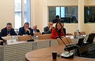 Milletvekili Günay, Paris'te gerçekleşen toplantıda...