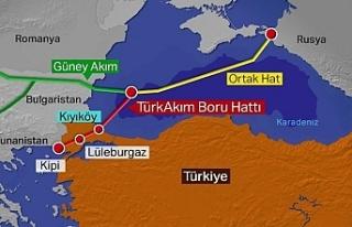 TürkAkım doğalgaz boru hattı açılıyor