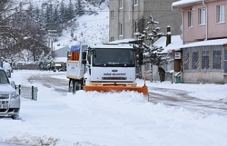 İnönü Belediyesi'nden kar seferberliği