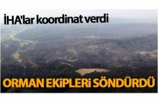İHA'lar koordinat verdi orman ekipleri söndürdü