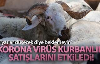 Korona virüs kurbanlık satışlarını etkiledi