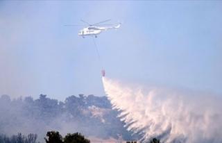 Çanakkale'deki orman yangını kontrol altına...