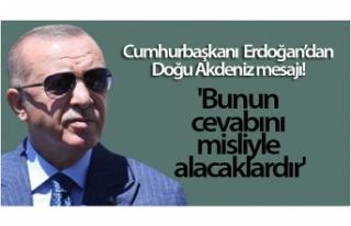 Cumhurbaşkanı Erdoğan: 'Bunun cevabını misliyle...