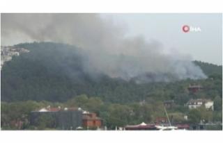 Anadolu Hisarı'ndaki orman yangınına müdahale...
