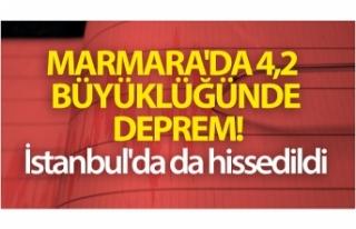 Marmara'da 4,2 büyüklüğünde deprem oldu!...