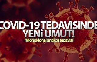 Covid-19 enfeksiyonu tedavisinde monoklonal antikor...
