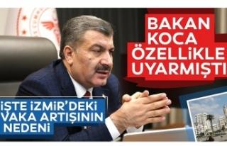 İzmir'deki vaka artışının nedenleri