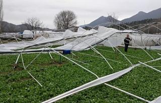 Mihalgazi'de kuvvetli rüzgar seralarda hasara sebeb...