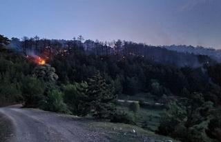 Eskişehir'de çıkan orman yangını kısa sürede...