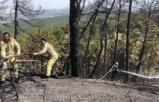 Mihalıççık'taki orman yangınında soğutma...