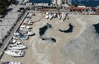 Marmara Denizi'nde deniz salyası temizliği...