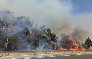 Muğla'da orman yangını söndürüldü