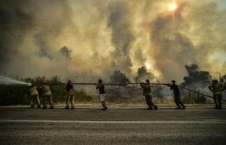 Bakan Bilgin: 'Orman yangınlarından etkilenenlerin...