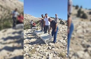 Günyüzü ilçesine 500 kınalı keklik salındı