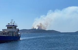 İstanbul Heybeliada'da çıkan yangın kontrol...