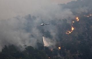 Köyceğiz'deki yangın devam ediyor, bir bölge...