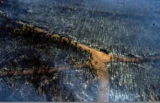 Marmaris'te orman yangınlarına yapılan müdahale...