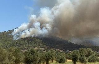 Marmaris yangını tekrar parladı, alevler Hisarönü'nde...