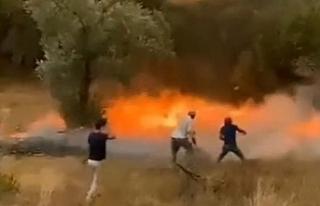 Patlayan kozalaklar saniyeler içinde yangını böyle...