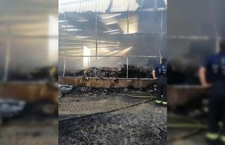 Sirke fabrikasındaki yangının faturası 300 bin...