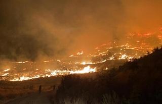 Muğla'da gece başlayan orman yangınını söndürme...