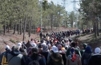 Yüzlerce kişi ormanlar için toplandı