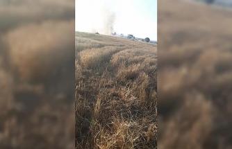 Kargalar kavga yaptı 15 dekarlık buğday tarlası yandı