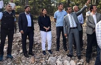 Milletvekili Günay'dan, yangında zarar gören orman arazilerinde inceleme