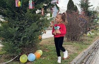 Yılbaşında ağaçlar çocuklar için süslendi