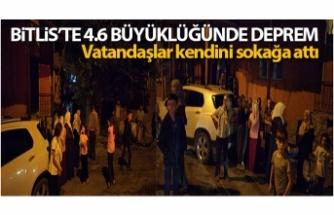 Bitlis'in Hizan ilçesinde 4.6 büyüklüğünde deprem