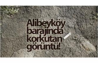 Alibeyköy barajında korkutan görüntü!