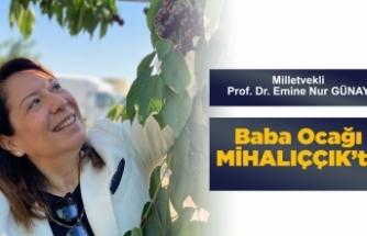 Milletvekili Prof.Dr. Günay baba ocağında...