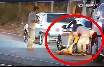 Aracıyla çarptığı köpeği ölüme böyle terk etti