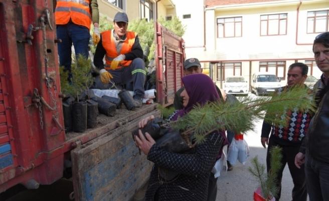 Ormancılık Günü'nde halka 5 bin fidan dağıtıldı