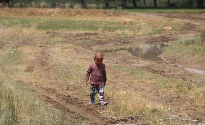 Sel mevsimlik tarım işçilerini de vurdu