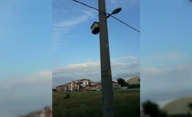 Elektrik direğine sabitlenen arı kovanı