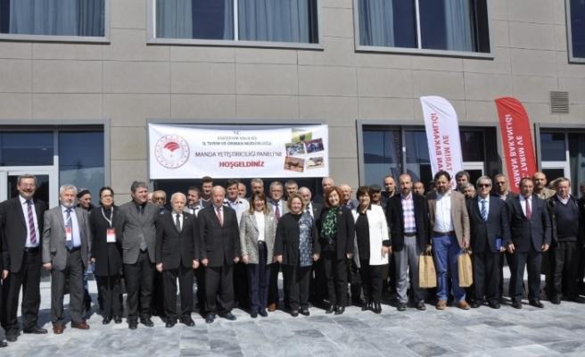 Eskişehir'de Damızlık Manda Yetiştiricileri Birliği kuruldu
