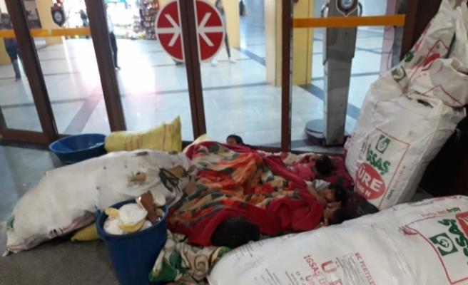Otobüs peronunda 'mevsimlik uyku'