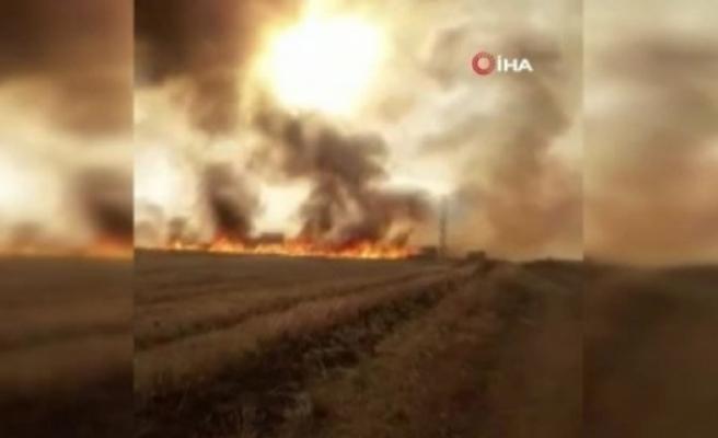 Terör örgütü YPG/PKK, 20 bin dönüm tarım arazisini yaktı