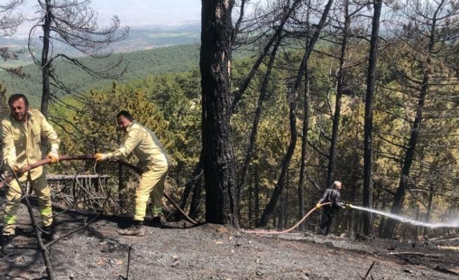 Mihalıççık'taki orman yangınında soğutma çalışmaları sürüyor