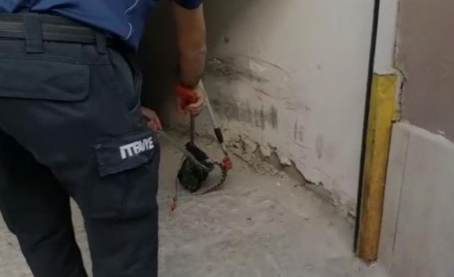 Şehir merkezinde bir garajda zehirli yılan yakalandı