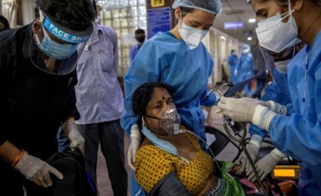 Kara mantar hastalığı Meksika'ya da sıçradı