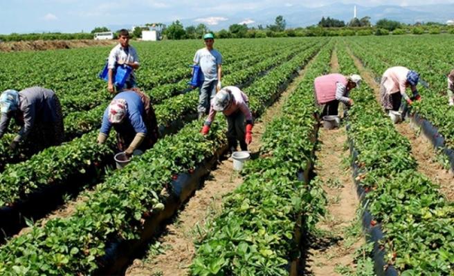 Tarımda 219 proje ile 407 kişiye istihdam
