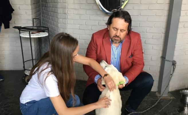 Eskişehir'de ilk defa bir köpeğe mikroçip takıldı