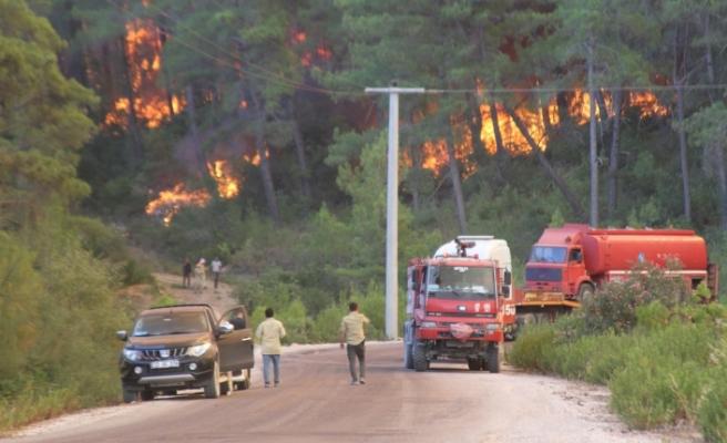 Manavgat'ta orman yangını devam ediyor