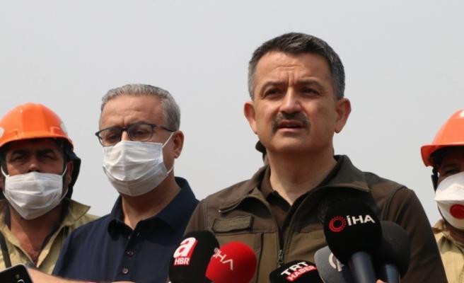 Mersin ve Hatay'daki yangın kontrol altına alındı: 4 gözaltı