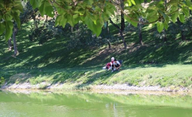 Ağaç gölgesinde balık tutarak şehrin stresinden uzaklaşıyorlar