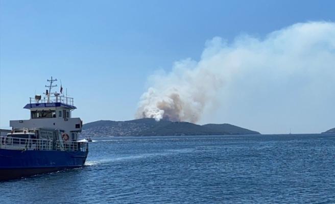 İstanbul Heybeliada'da çıkan yangın kontrol altına alındı