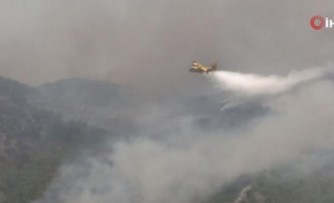 Köyceğiz'de yangınla mücadele çalışmaları sürüyor